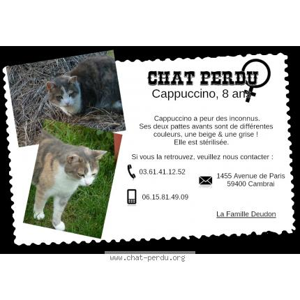 Chat sexe carcassonne